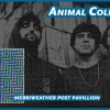 Music Review: Animal Collective